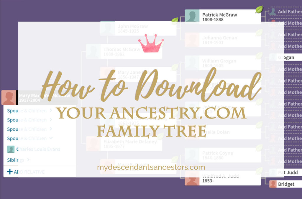 How To Download Your Ancestry.com Family Tree