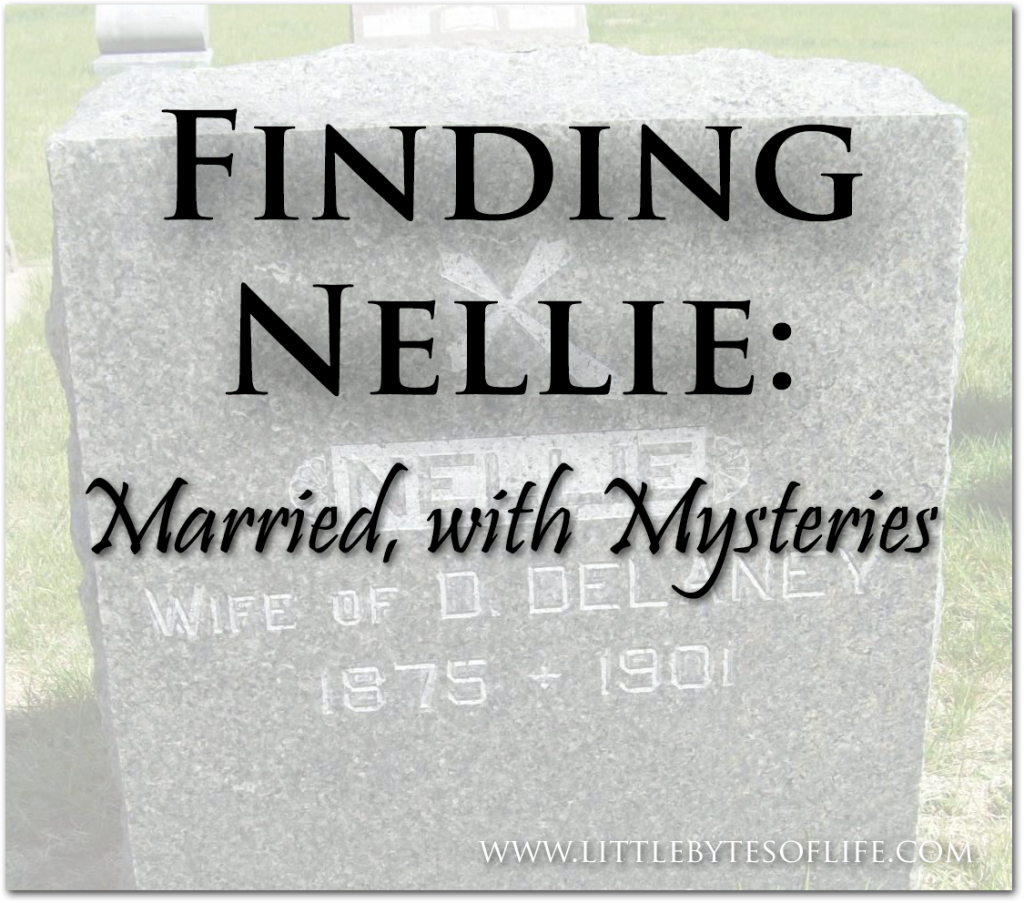 Image for Finding Nellie Part 2: Married, with Mysteries