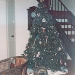 Advent Calendar of Christmas Memories: Christmas Trees