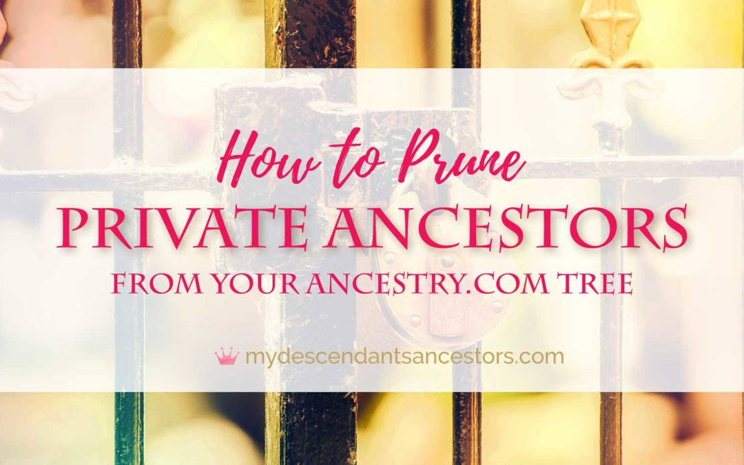 Private Ancestors: How to Prune Them From Your Ancestry Tree