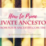 How to Prune Private Ancestors From Your Ancestry Tree