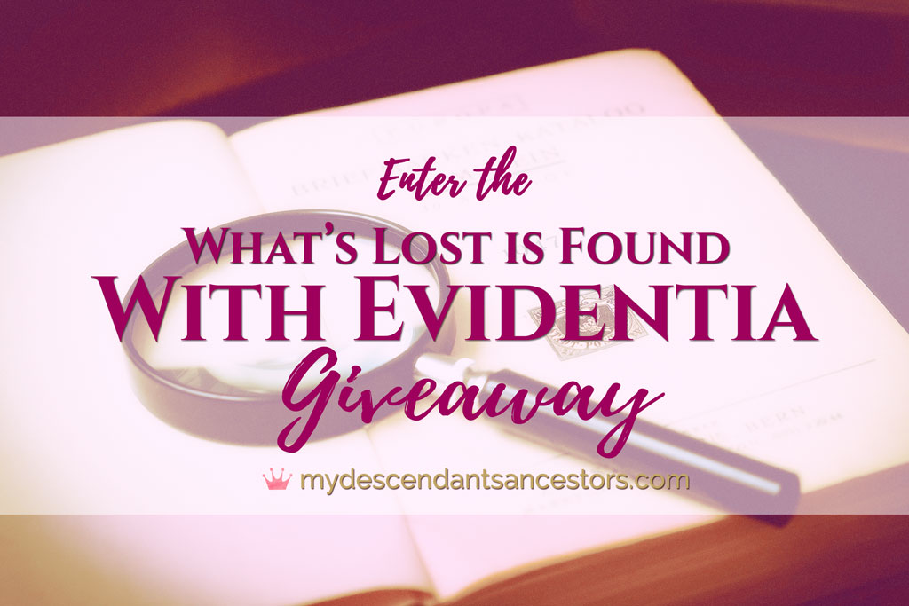 """Enter the """"What's Lost is Found with Evidentia"""" Giveaway"""