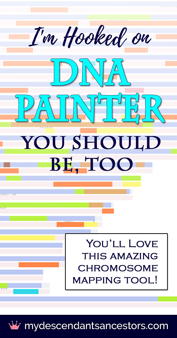 I'm Hooked on DNA Painter  You Should Be, Too  | My